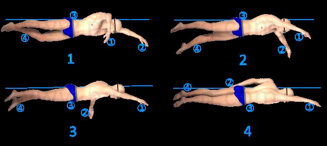 Coordinación Propulsión 4 pasos png