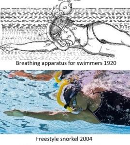 snorkel-evolution