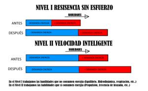 CAPACIDADES NIVEL 1 Y 2