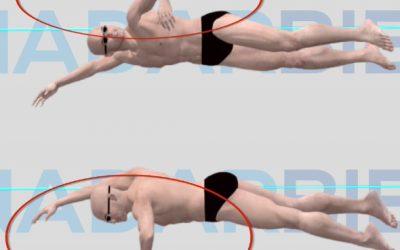 Las Fases de la brazada en el estilo libre