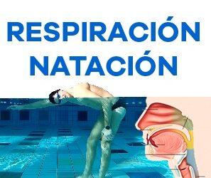 Respiración en natación (el secreto del paladar blando)